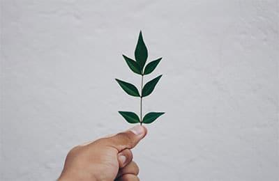WEBINAR   IEMA Environmental Sustainability Skills for Managers