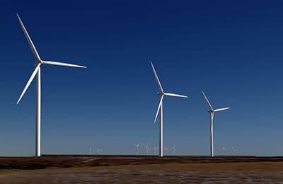 IEMA Environmental Sustainability Skills for the Workforce
